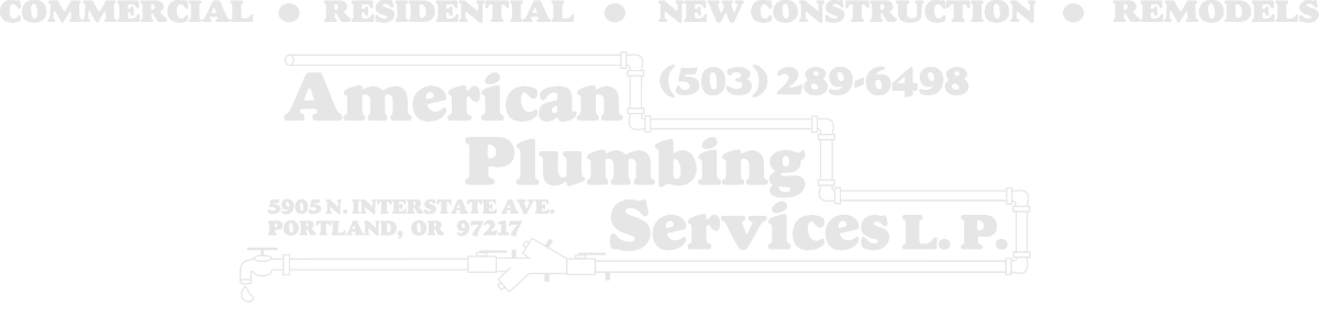 American Plumbing Services LP